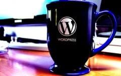 WordPress admin Themes
