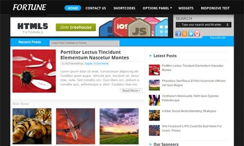 Fortune Theme from MyThemeshop download