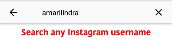Search for any Instagram username