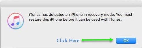 iphone has been detected in recovery mode