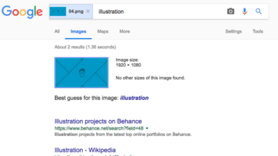 reverse image search example