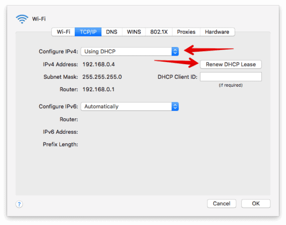 TCP IP Options in Mac