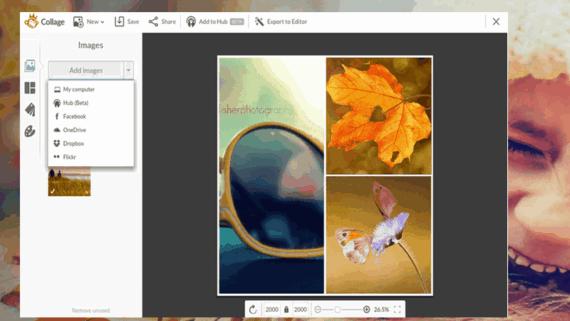 PicMonkey Collage App