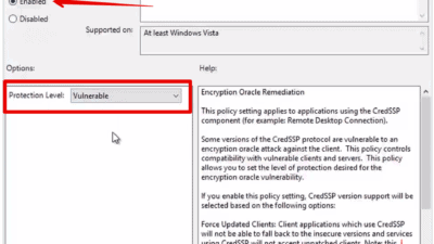 Solving CredSSP Encryption Oracle Remediation Error