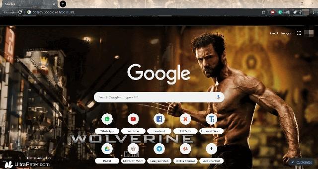 Wolverine Theme for Google Chrome