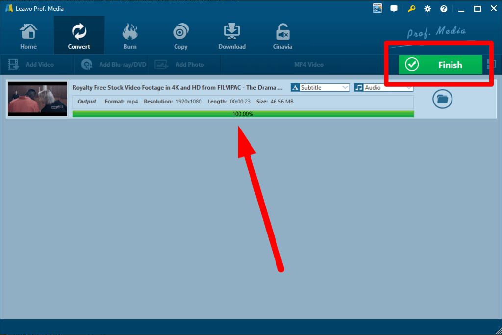 Leawo Blu-ray Ripper convert progress bar
