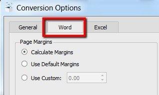 conversion option word